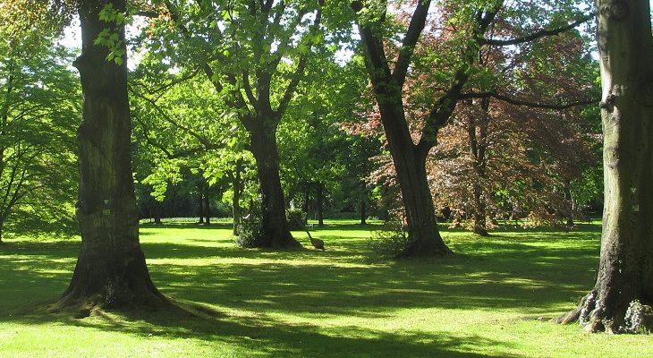 Stammheimer Schlosspark Sommer 1200x400