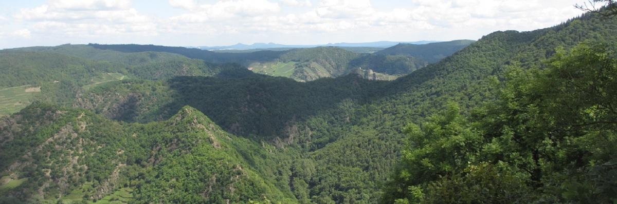 Siebengebirge-Blick 1200x400